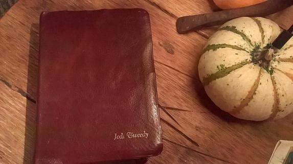 Burgundy Bible