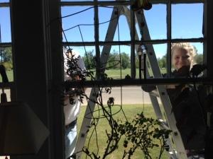 chloe-at-the-window